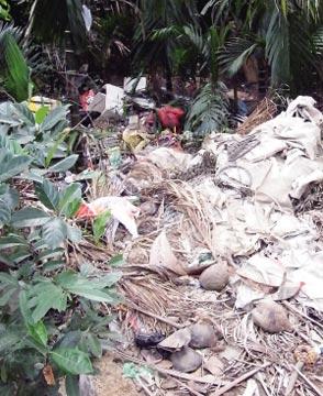 海南/海南五指山番空村两天清掉40余吨垃圾